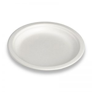 Carton de 500 Assiettes bagasse blanche 26cm
